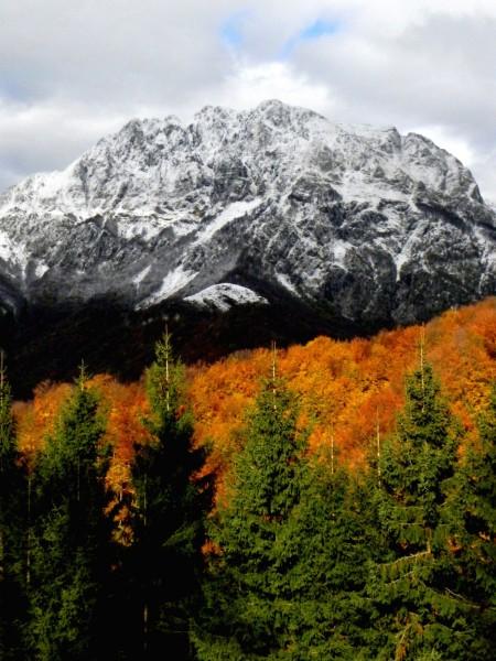 Jesen v Čadrgu, zima na Rdečem robu