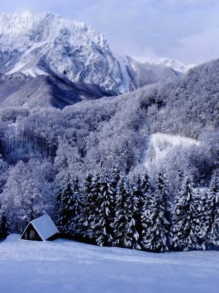 Zima skozi naše okno